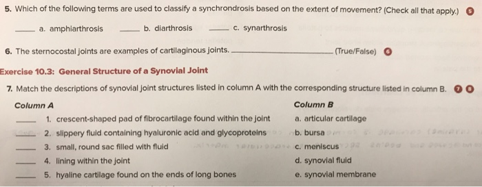 Solved 5 Which Of The Following Terms Are Used To Classi