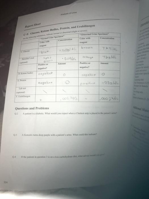 Do my lab report