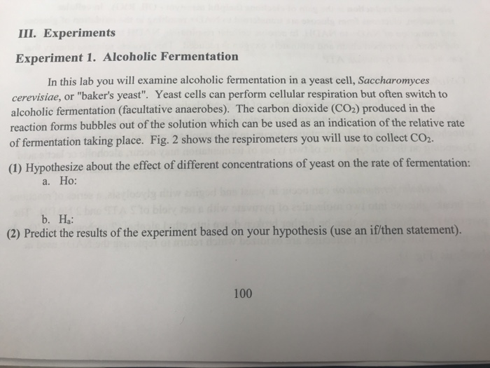 rate of fermentation of yeast experiment