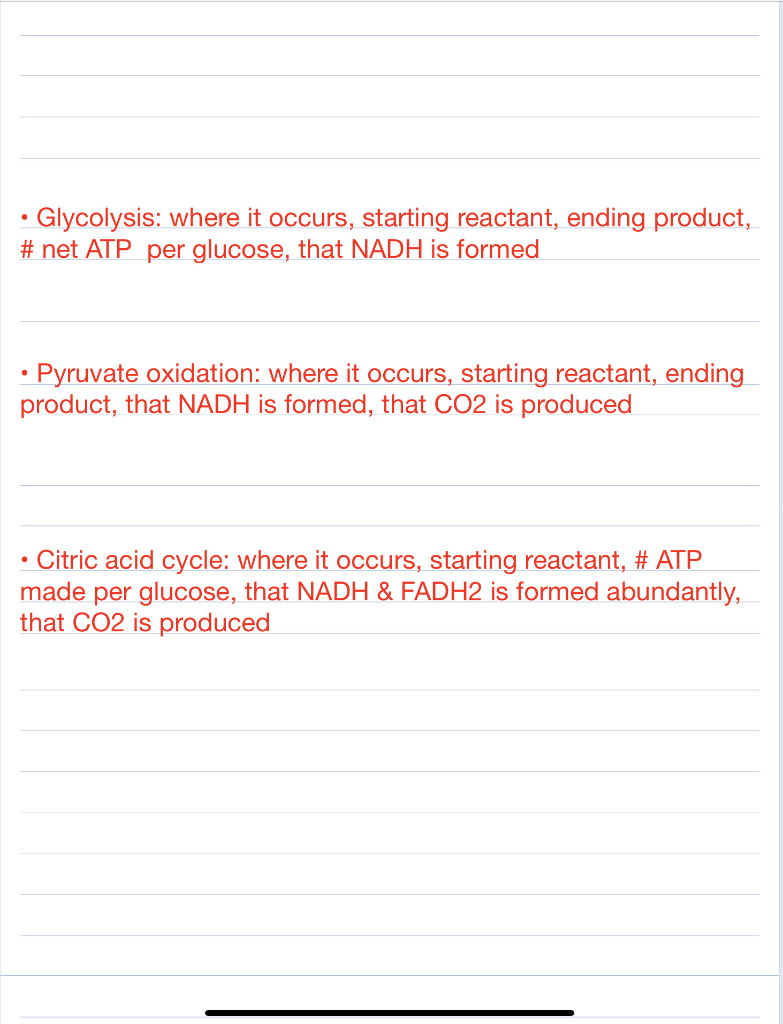 Glycolysis: where it occurs, starting reactant, ending product, # net ATP per glucose, that NADH is formed . Pyruvate oxidati