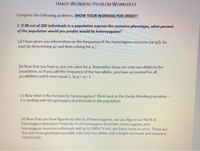 The Hardy Weinberg Equation Worksheet Answers - Worksheet List