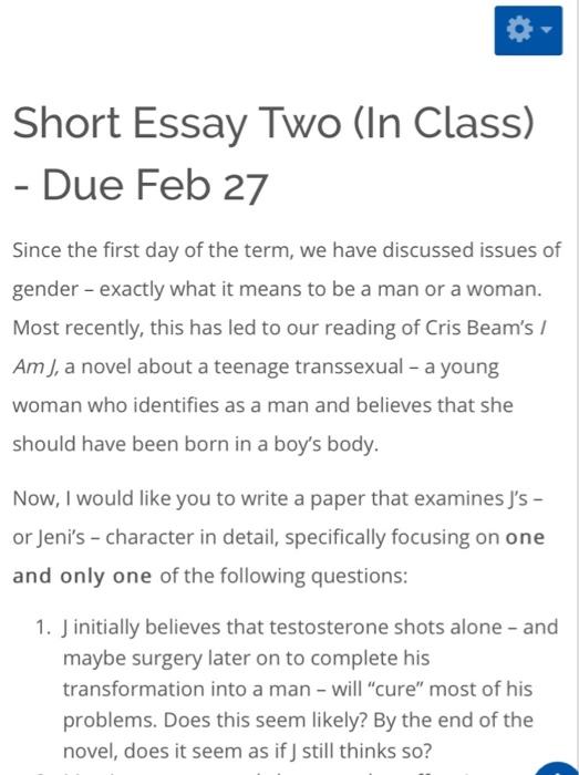 about a boy essay