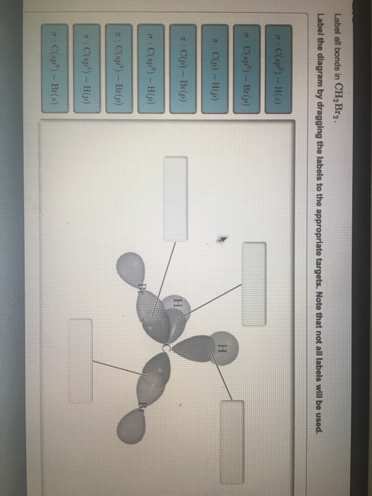 Solved  Label All Bonds In Ch 2br 2  Label The Diagram By