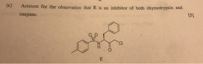 (c) Account for the observation that E is an inhibitor of both chymotrypsin and caspase. 15) Cl