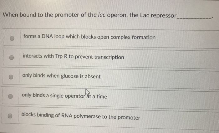 When bound to the promoter of the lac operon, the Lac repressor forms a DNA loop which blocks open complex formation interact