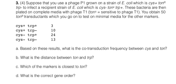 3. (4) Suppose that you use a phage P1 grown on a strain of E. coli which is cys+ ton trp- to infect a recipient strain of E.