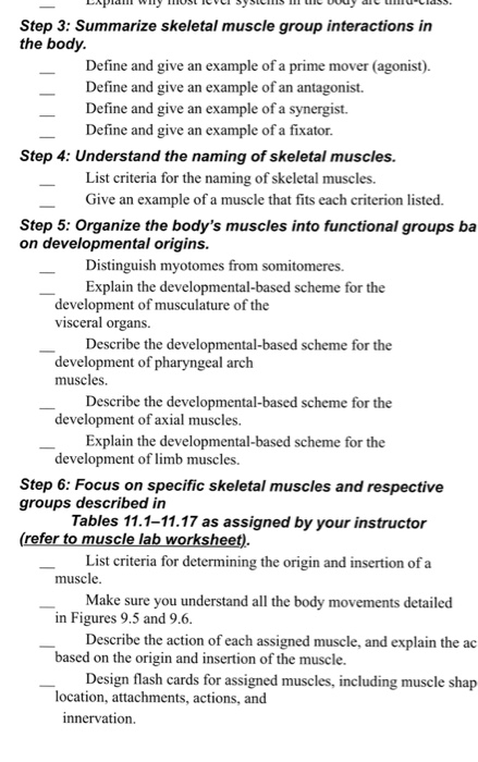 Solved Step 3 Summarize Skeletal Muscle Group Interactio