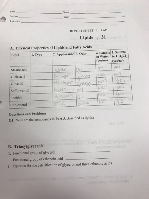 Solved Date Section Instructor Name Team Report Sheet Lab