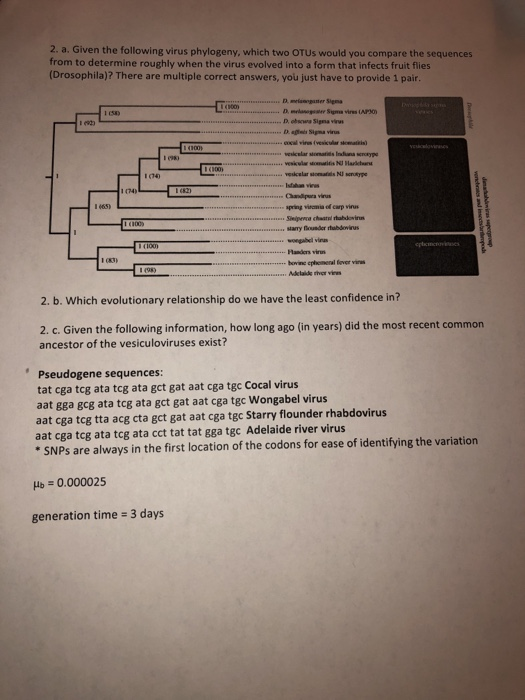2. a. Given the following virus phylogeny, which two OTUs would you compare the sequences from to determine roughly when the