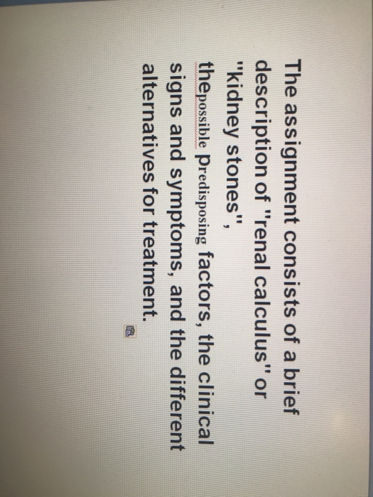 cite an essay zara