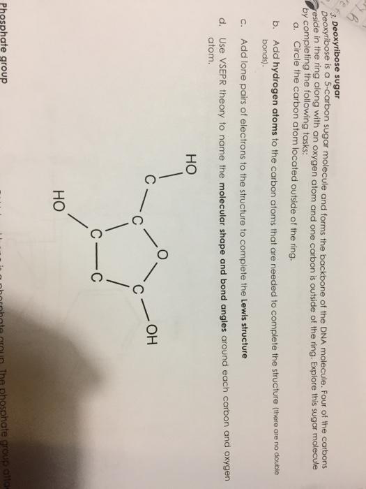 diagram of ribose deoxy solved sugar deoxyribose deoxy ribose is a 5 carbon sugar  solved sugar deoxyribose deoxy ribose