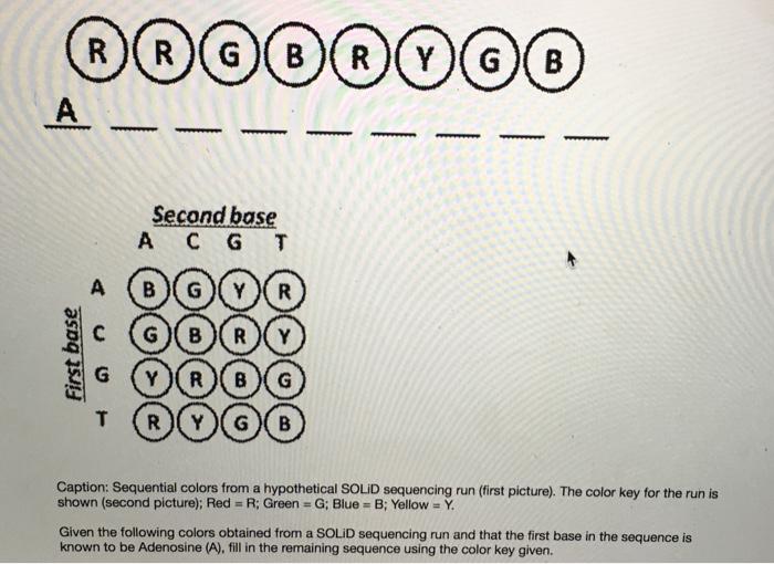 Solved: Second Base A C G T T (R)(Y)G (B Caption: Sequenti