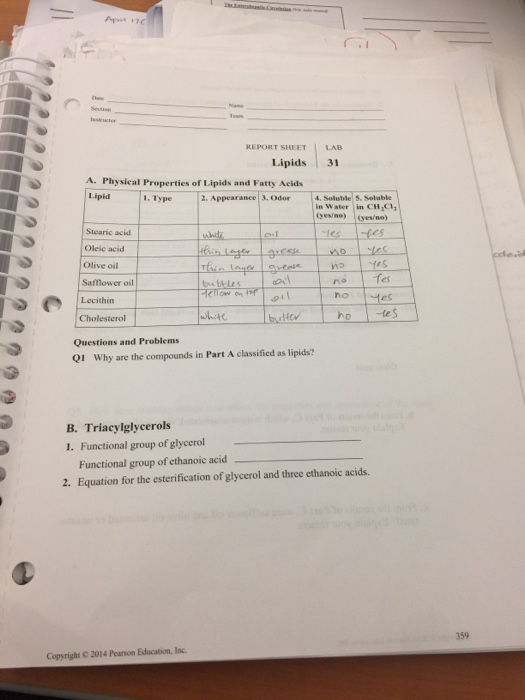 Solved Report Sheet Lipids 31 A Physical Properties Of L