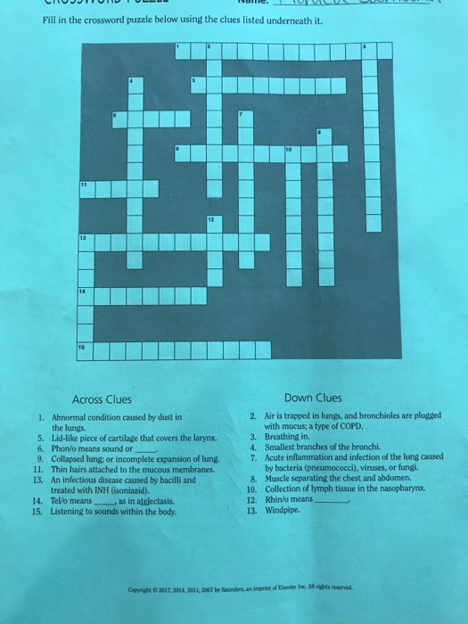 Solved fill in the crossword puzzle below using the clues fill in the crossword puzzle below using the clues listed underneath it down clues across ccuart Image collections