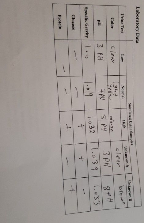Solved: Prelab Questions 1  What Are The Normal Results Fo