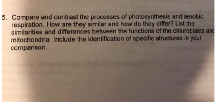 compare and contrast photosynthesis and aerobic respiration