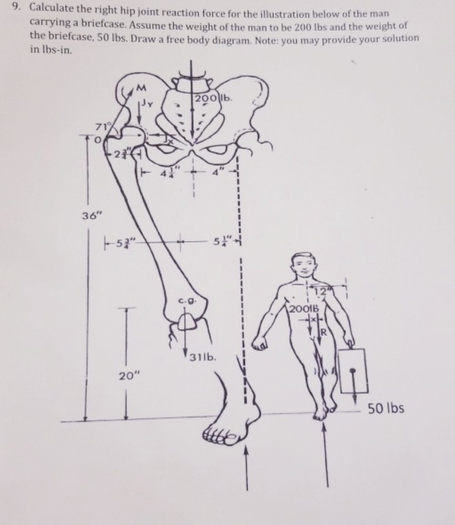 Calculate the right hip joint reaction force for the illustration below of the man carrying a briefcase. Assume the weight of the man to be 200 lbs and the weight of the briefcase, 50 lbs. Draw a free body diagram. Note: you may provide your solution 9. in lbs-in. 200lb 71 36 12 C.g 2001B 31lb, I 20 50 lbs