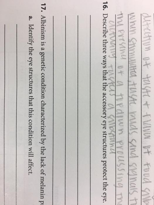 Change language Essay vcenter about