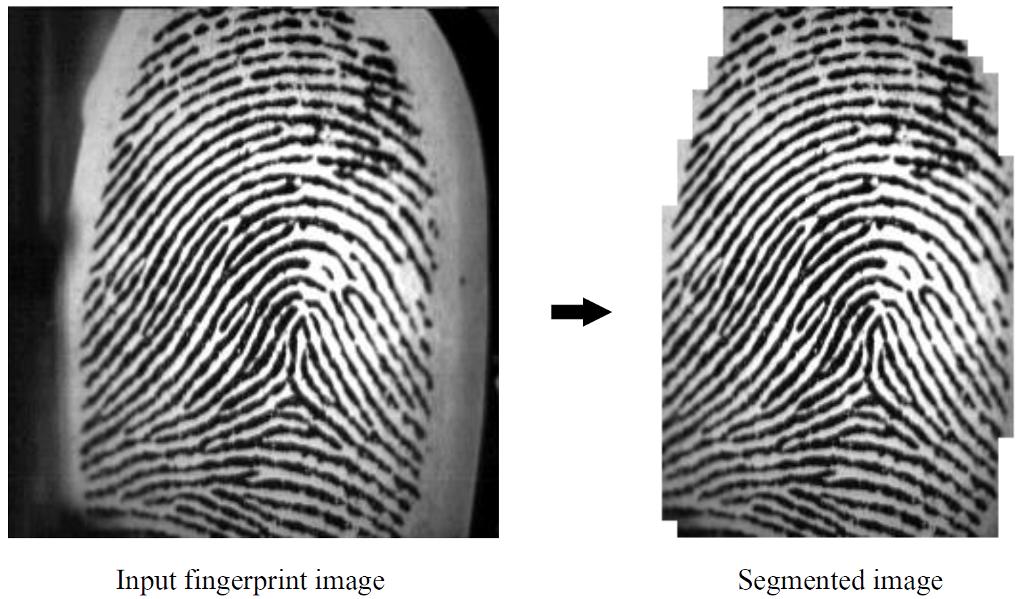 Solved: [Python] [OpenCV] Fingerprint Segmentation Impleme
