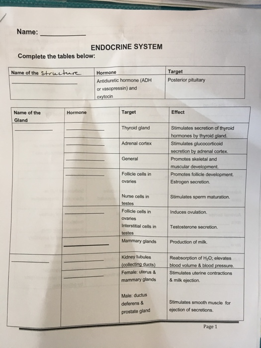 Solved Name Endocrine System Complete The Tables Below