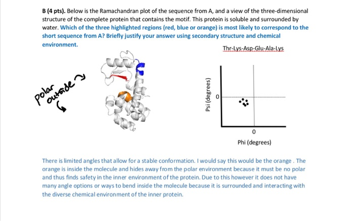 Solved Ramachandran Plot Question I Put An Answer But N
