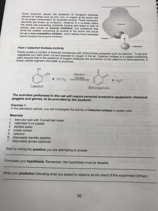 benzoquinone potato