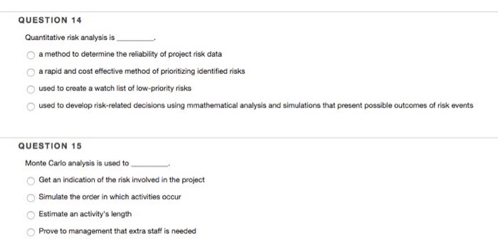 quantitative cost risk analysis