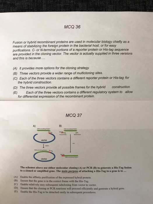 Solved: MCQ 36 Fusion Or Hybrid Recombinant Proteins Are U