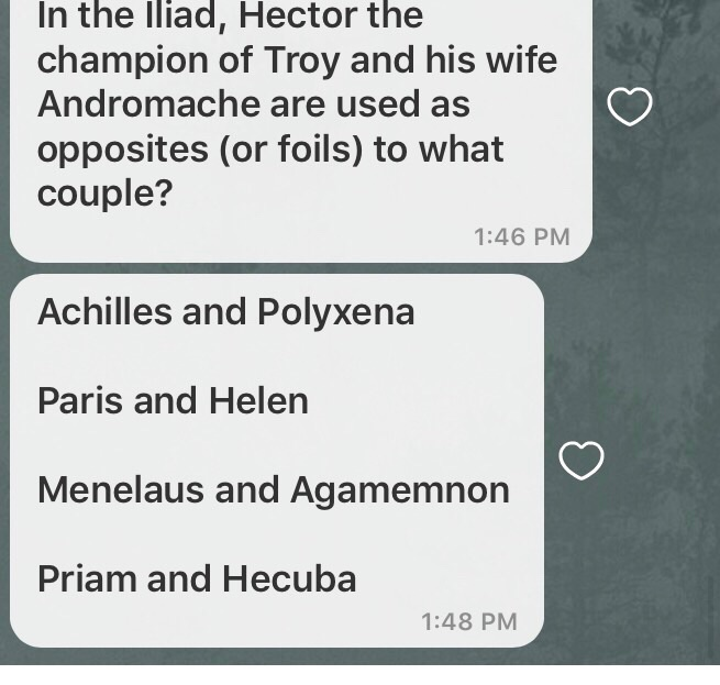 Solved: In The Iliad, Hector The Champion Of Troy And His