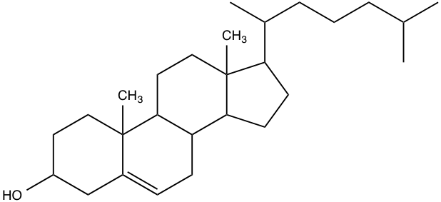 Image result for cholesterol