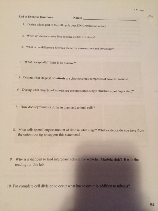Solved End Of Exercise Questions Name I During Which Pa Chegg Com