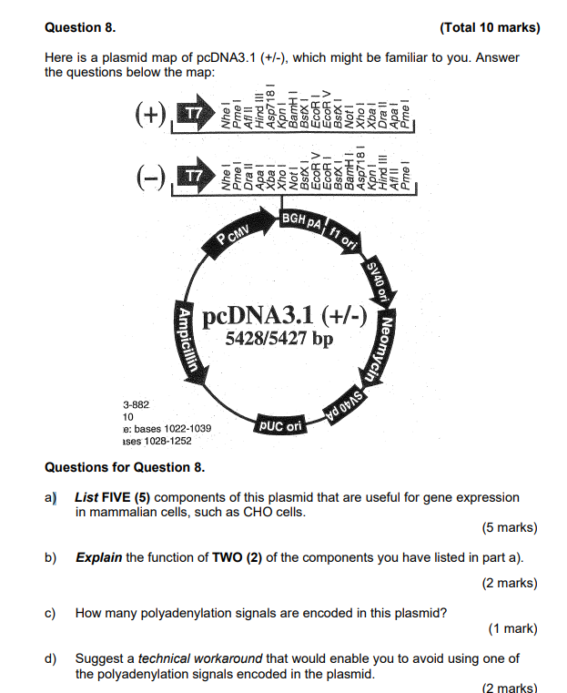 Pcdna3 1 Map Solved: Question 8 (Total 10 Marks) Here Is A Plasmid Map