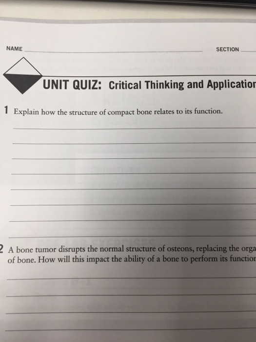 Solved Name Section Unit Quiz Critical Thinking And Appl