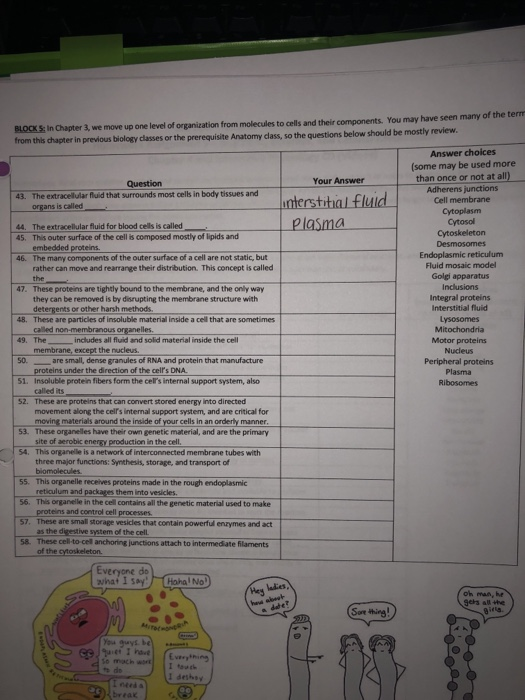 Solved: BIO 206-General Human Physiology Homework Assignme