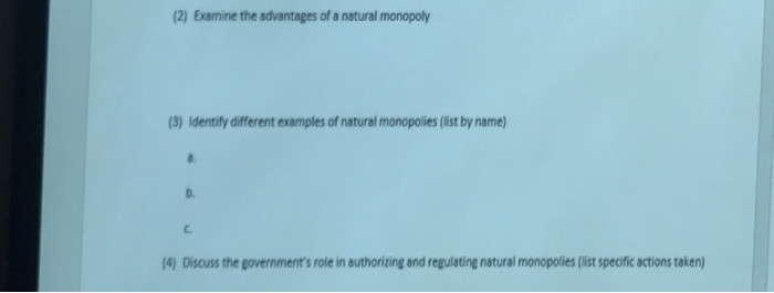 Solved Examine The Advantages Of A Natural Monopoly Ident