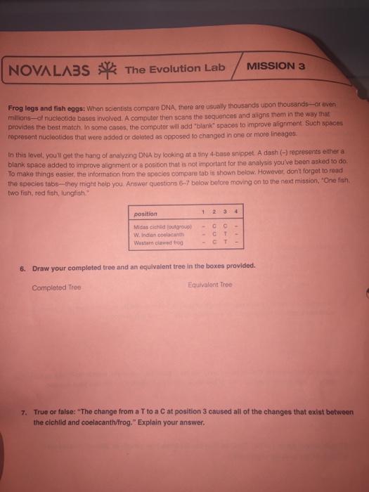 Solved: NOVA LA35 The Evolution Lab MISSION 3 Frog Legs An ...