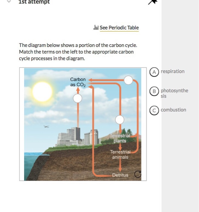 Solved 1st attempt see periodic table the diagram below s 1st attempt see periodic table the diagram below shows a portion of the carbon cycle ccuart Images