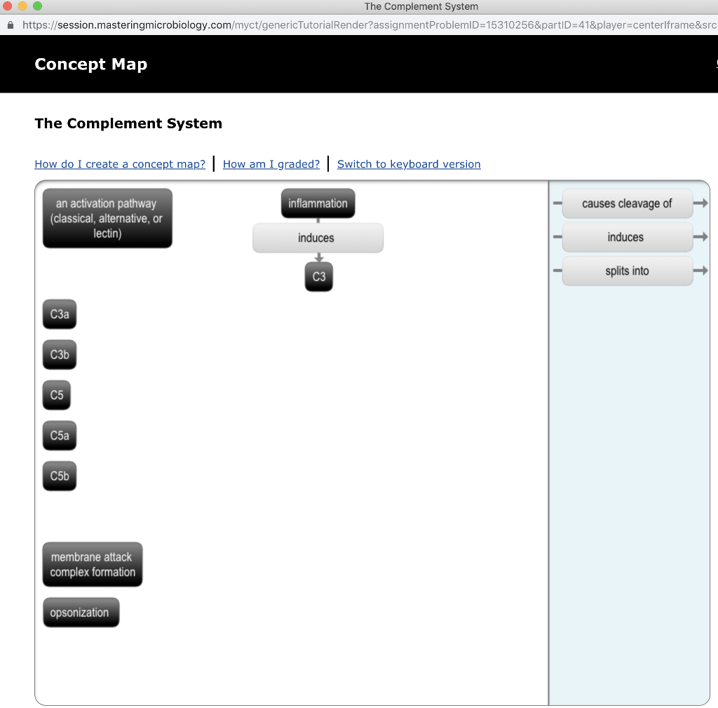 The Complement System Concept Map.Solved The Complement System A Https Session Masteringm
