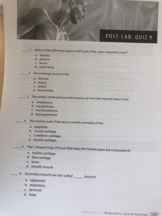 Solved: POST-LAB: QUIZ9 1  Which Of The Following Organs I