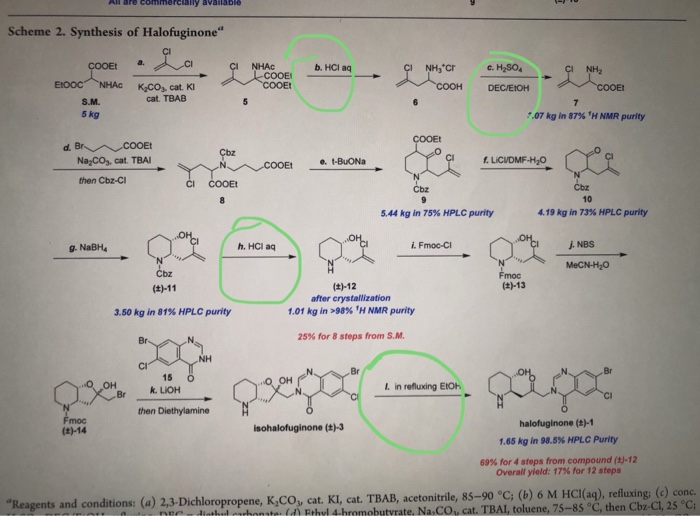 Solved: What Are The Names Of The 4 Circled Reactions In T