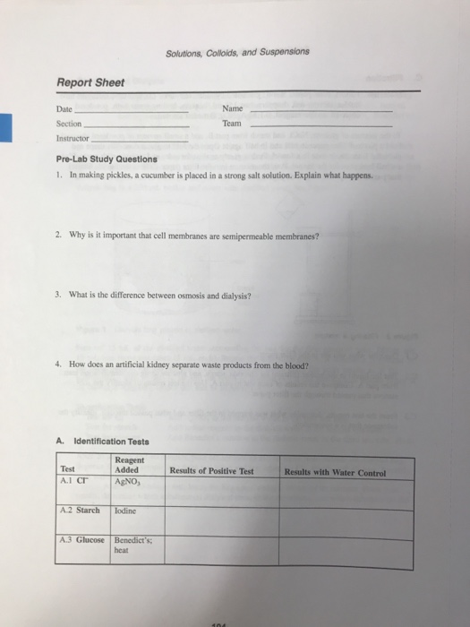 Solved Solutions Colloids And Suspensions Report Sheet