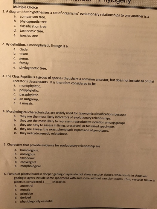 Solved study guide for midterms in biology ii he doesnt a diagram that hypothesizes a set of organisms evolutionary relationships to one ccuart Choice Image