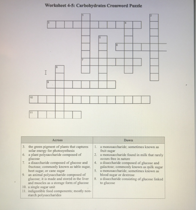 Solved: Worksheet 4-5: Carbohydrates Crossword Puzzle 10 A ...