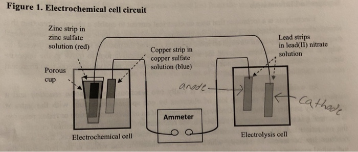 I Conducted An Electrolysis Lab  Pictures 2 And 3