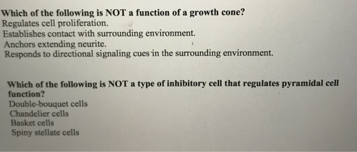 Which of the following is NOT a function of a growth cone? Regulates cell proliferation. Establishes contact with surrounding environment. Anchors extending neurite. Responds to directional signaling cues in the surrounding en Which of the following is NOT a type of inhibitory cell that regulates pyramidal cell function? Double-bouquet cells Chandelier cells Basket cells Spiny stellate cells