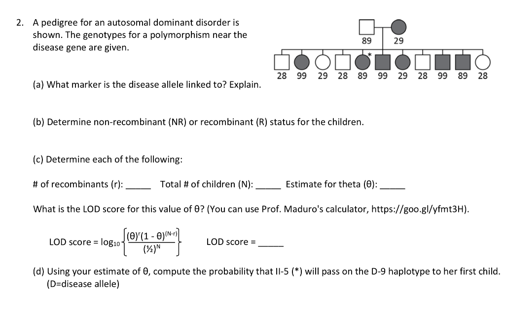2. A pedigree for an autosomal dominant disorder is shown. The genotypes for a polymorphism near the disease gene are given 8