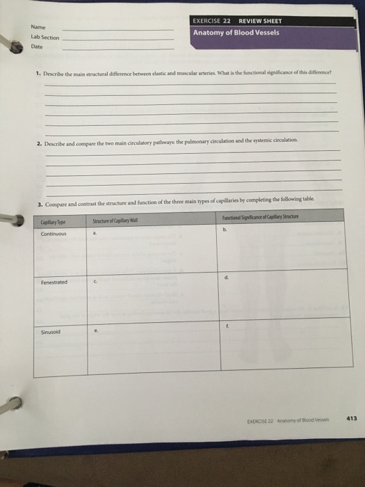 Solved: EXERCISE 22 REVIEW SHEET Name Lab Section Date Ana ...
