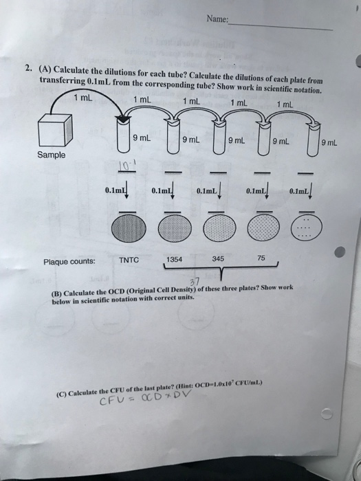 essay writing uses of computer english