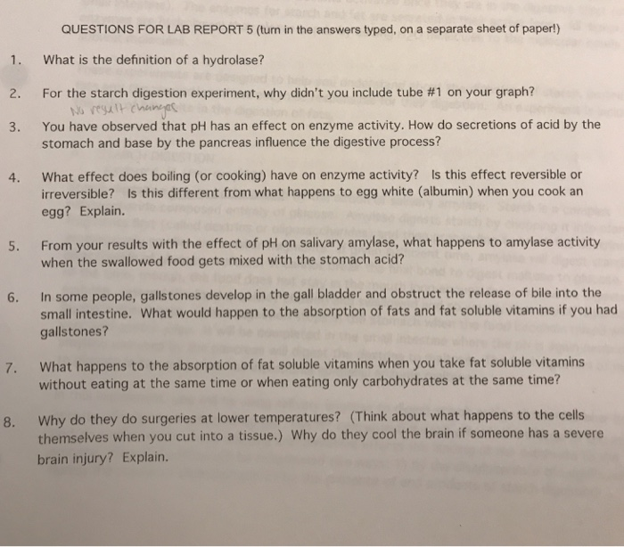 enzyme activity lab report answers