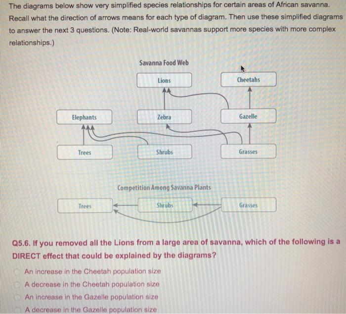 media%2Fd71%2Fd710e5a1 c32c 42eb a604 15882764ebe7%2Fimage solved the diagrams below show very simplified species re